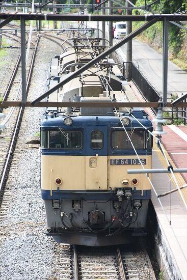 DSC_6459-1