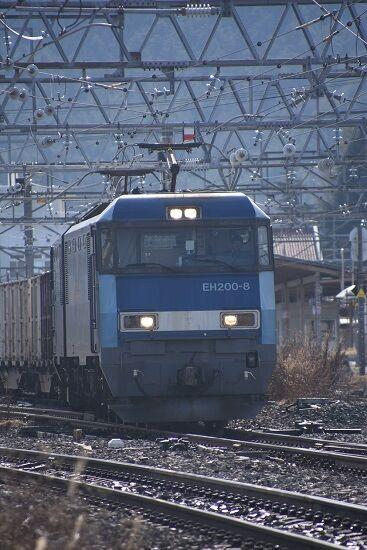 DSC_0341-1