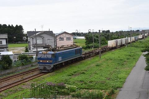 DSC_9593-1