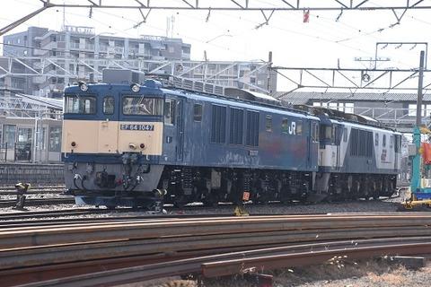 DSC_3532-1