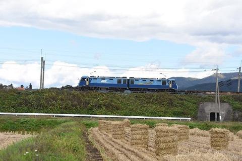 DSC_8976-1