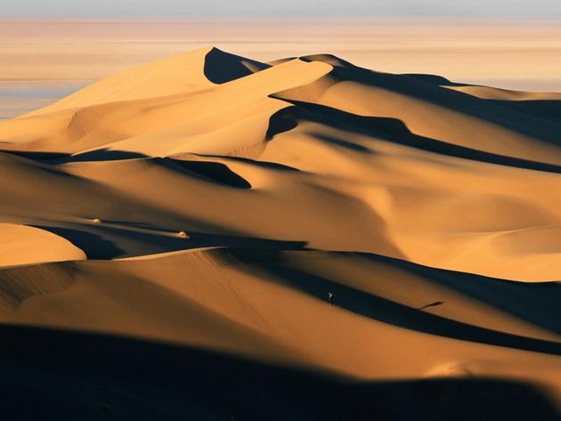 desert_nake-w960