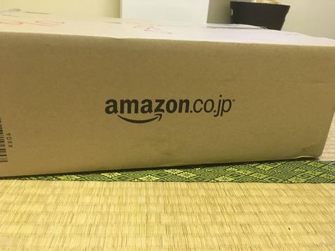 amazonから3万円のオナホールが届いたよー[A10サイクロンSA]