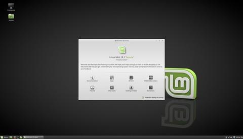 Linux-Mint-19c1
