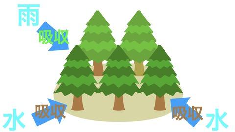 森の生態系.001