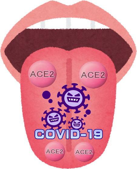 ACE2_Covid-19