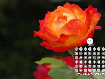 2009年11月カレンダー