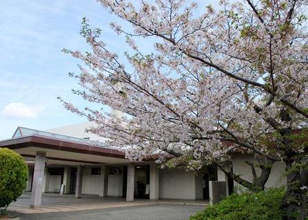 桜満開の小林斎場で友人葬