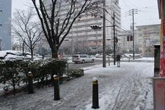 雪の日003