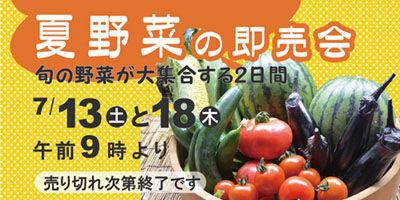 夏野菜の即売会