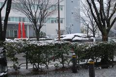 雪の日001