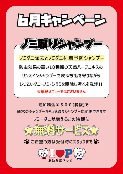 【WEB用】6月POP(ノミ取り)