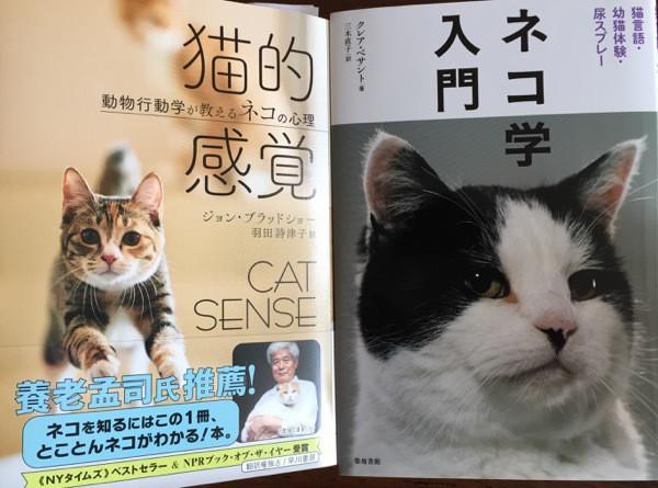猫的感覚、ネコ学入門