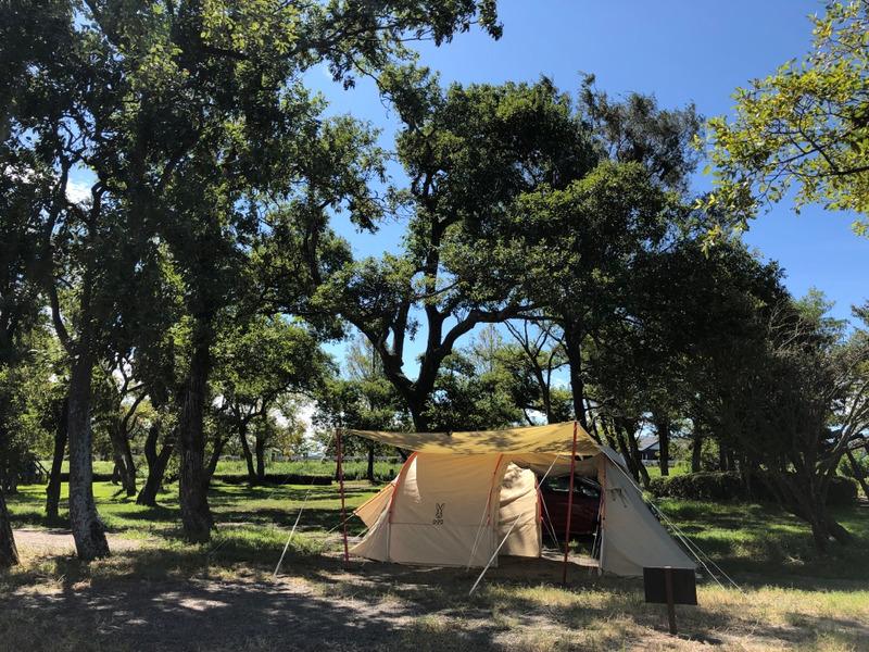 女子キャンプ:びわ湖畔キャンプにはまりそう!車乗り入れ可能のフリーサイトが素敵。六ツ矢崎浜オートキャンプ場