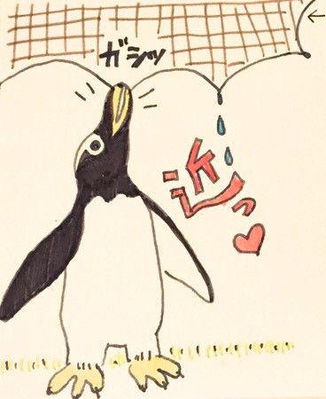 名古屋港水族館でペンギンウォーク
