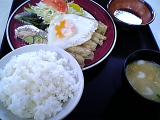 屯田ハウス(餃子定食01)