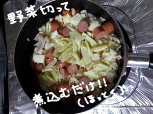 スープの素5