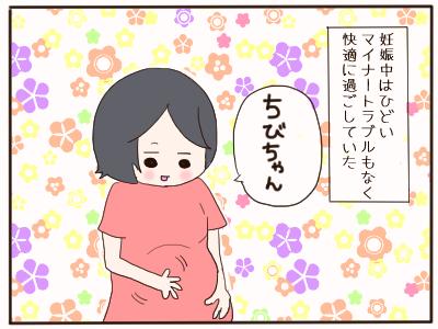 カンジダ1