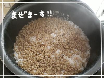 するり麦7