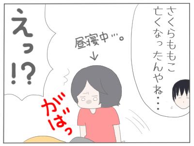 ちびまる子1
