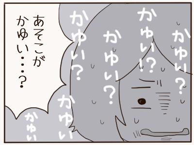 カンジダ2