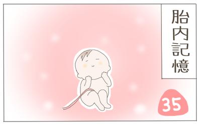 胎内記憶 表紙