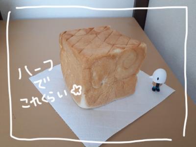 高級パン4