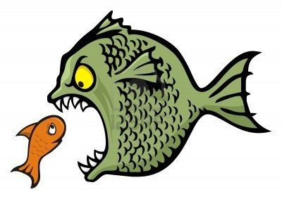4566356-angry-fish-bullying-a-little-one-cartoon-illustration