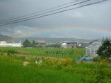 20120806虹