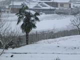 20140208雪2