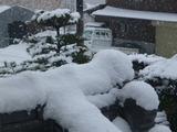 20140208雪1