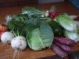 20111113野菜