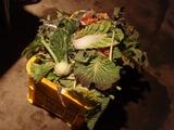 20120122野菜くず