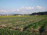 20110914三田2
