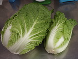 20111024白菜初取り