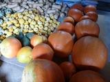 20130803かぼちゃ収穫6