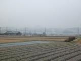 20121228三田雪1