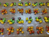 20140709ミニトマト