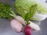 20141231新年準備野菜