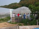 20120516トマト部会