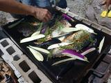 20120819農園レストラン8