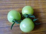 20130618白トマト