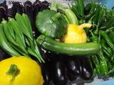20120701夏野菜