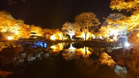 桜山ライトアップ、水面に映る光