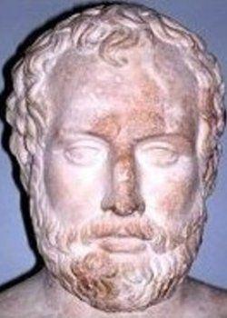 ペルディッカス250x350