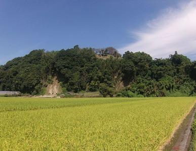 肥前日之江城