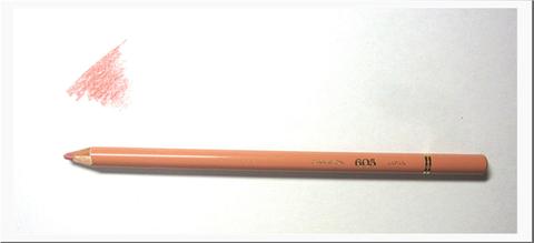 シナモン(605)
