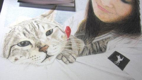 324編猫を抱く女性