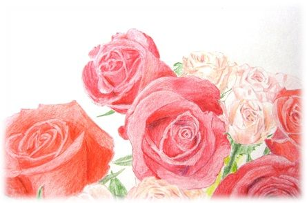 バラ色塗り2
