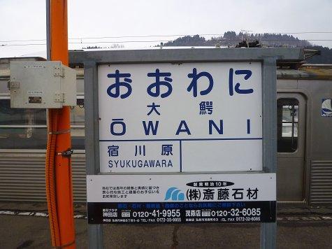 oowani (5)